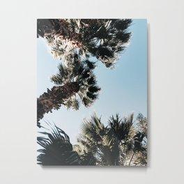 Among the Palms Metal Print