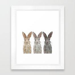 Triple Bunnies Framed Art Print