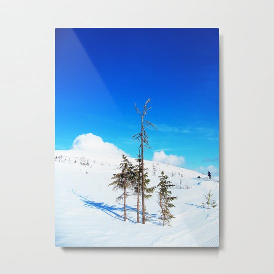 Still winter  (easter in Norway 2013) Metal Print