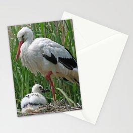Stork_2015_0101 Stationery Cards