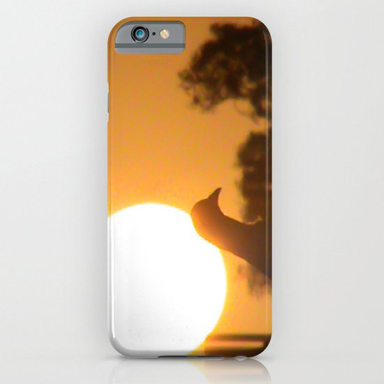 Pigeon Eclipse iPhone & iPod Case