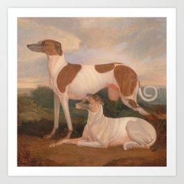 oil paintings of greyhounds Art Print