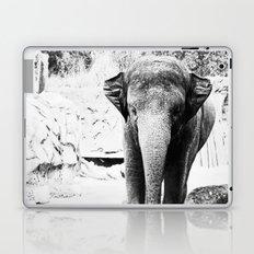 Dangerously Delicate Laptop & iPad Skin