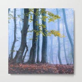 Mysterious Woods Metal Print