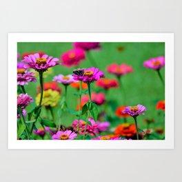 Flowers & the Butterfly Art Print