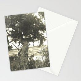 Marsh Landscape Stationery Cards