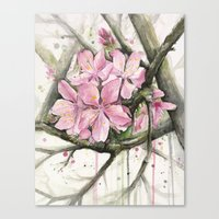 cherry blossom Canvas Prints featuring Cherry Blossom by Olechka
