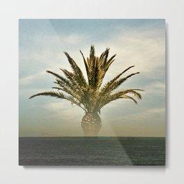 palmbeach Metal Print