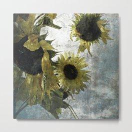 autumnal sunflowers Metal Print