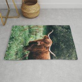 Scottish Highland Cattle Rug