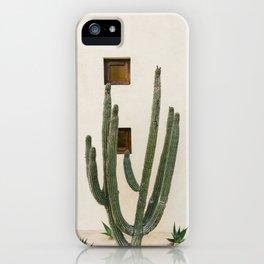 Cabo Cactus IX iPhone Case