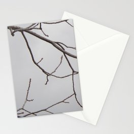 Cold Grey Sky Behind Leafless Tree Branches Stationery Cards