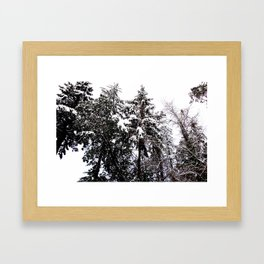 WINTER IS FALLING Framed Art Print