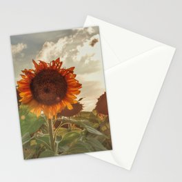 Golden Sunflower Sunsets Stationery Cards