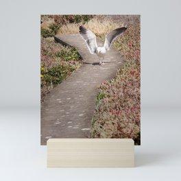 Seagull Struttin' Mini Art Print