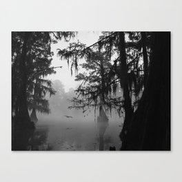 Caddo Lake, Texas Canvas Print