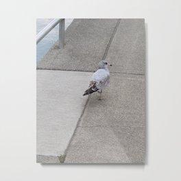 Dockside Stroll Metal Print