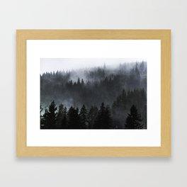 A Walk in the Woods - 23/365 Framed Art Print