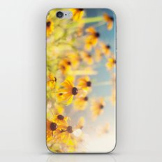 summer susans iPhone & iPod Skin