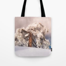 Frost Covered Pine Tote Bag