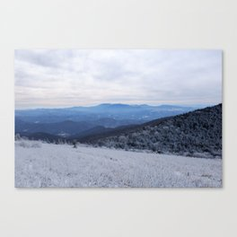 Winter at Roan Mountain Canvas Print