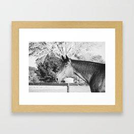 Autumn in Black & White Framed Art Print