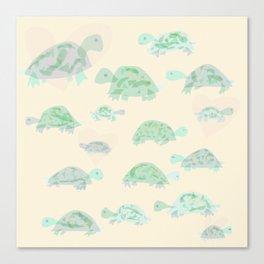 turtle mania Canvas Print