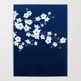 Navy Blue White Cherry Blossoms Poster
