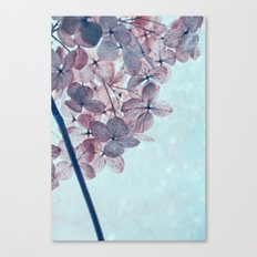 january Canvas Print