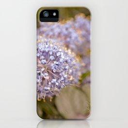 Darling Buds iPhone Case
