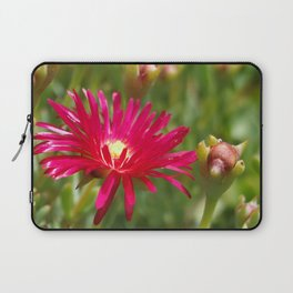 Pink Ice Plant Flower Laptop Sleeve