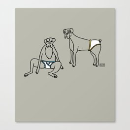 Boxers and Briefs Canvas Print