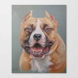 Happy Dog SMILING AMSTAFF FACE Cute pet portrait Pastel drawing Decor for Dog lover Canvas Print