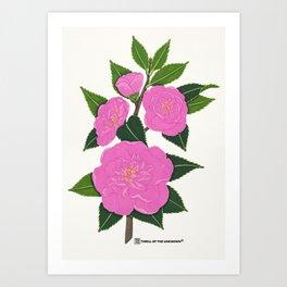 PINK WINTER CAMELLIA I Art Print
