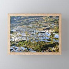 Rice terraces in China | Fine art print Framed Mini Art Print