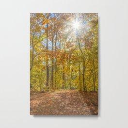 Golden Autumn Forest Metal Print