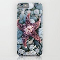 Sea Star Slim Case iPhone 6s