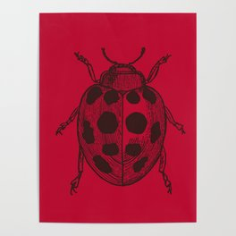 Lady Bug - Red Poster