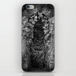 Door in the Wall_BV1 iPhone Skin
