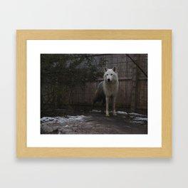 Ahote  Framed Art Print
