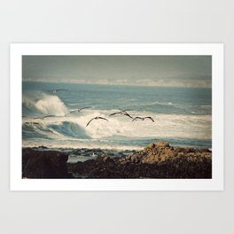 Birds Take Flight Over Ocean Art Print