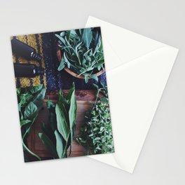 Herbal Alchemy Stationery Cards