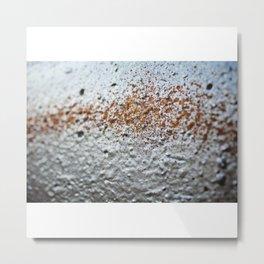 Sow Metal Print