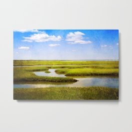 View in Green and Blue from Bass Hole Boardwalk at Grays Beach Yarmouth Port MA Cape Cod Summer Metal Print