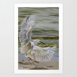 Snowy Egret Landing Art Print