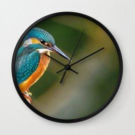 Wonderful Beautiful Little Blue Gold Creature Zoom UHD Wall Clock