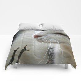 Close Up Of A Piebald Cat Comforters