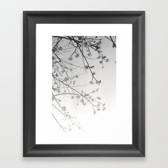 Rising Dawn Framed Art Print