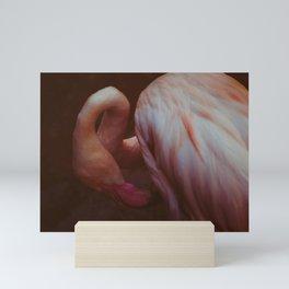 Phoenicopterus roseus Mini Art Print