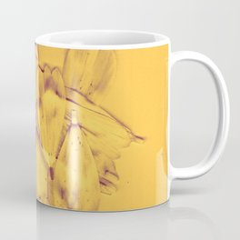 Bright Gold Breakup Flowers, Real Flowers, Daisies, Flower Photo, Rustic, Soft Grunge, Decaying Flowers Coffee Mug
